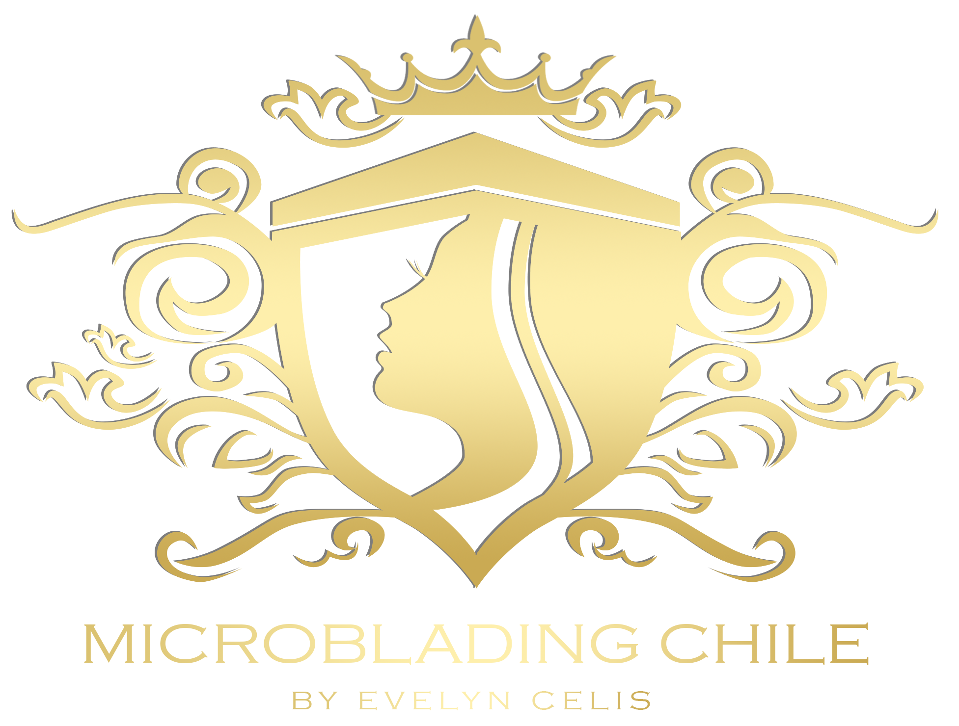 Microblading chile